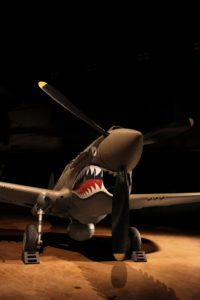 P40 shark teeth front view source for seaplane teeth